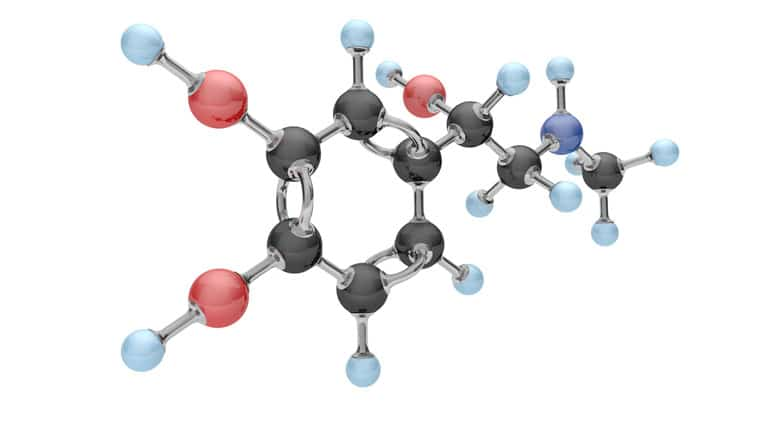 hormones structure