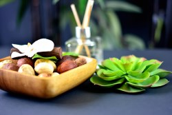 Spa fragrance and green plant