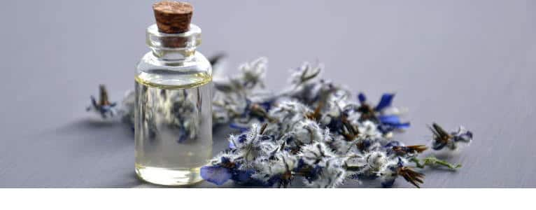 Lavender oil and few plants