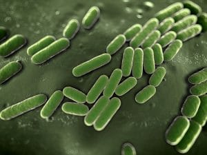 Antibiotics alone have a harder time getting rid of acne today due to antibiotic resistance.