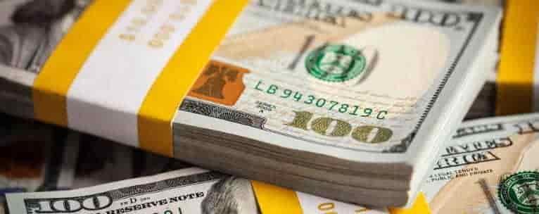 Dollar in a bundle